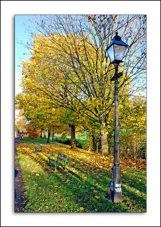 Lamp post and leaves, Wells