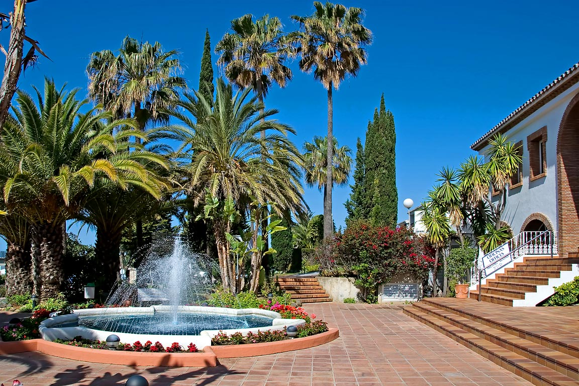 Fountain and palm trees, Miraflores