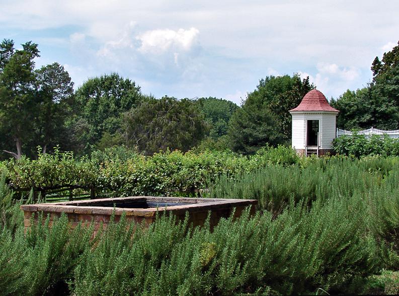Mt. Vernon, lower garden