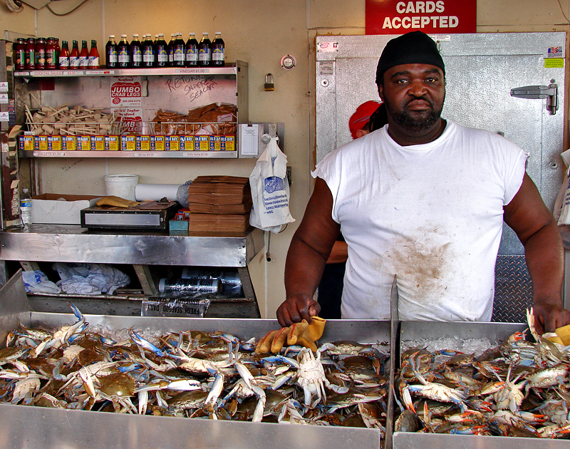 Blue crabs at the DC Waterfront