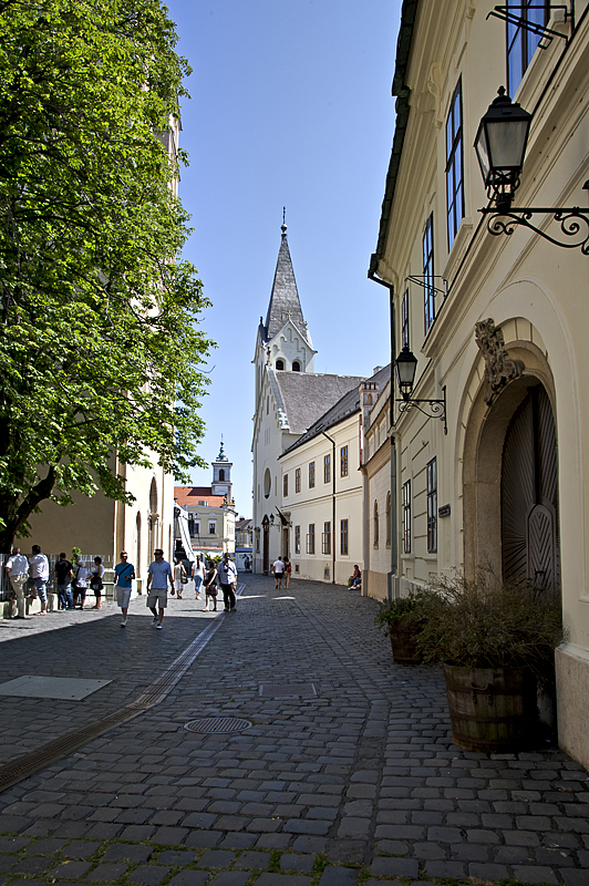 The castle districts one street