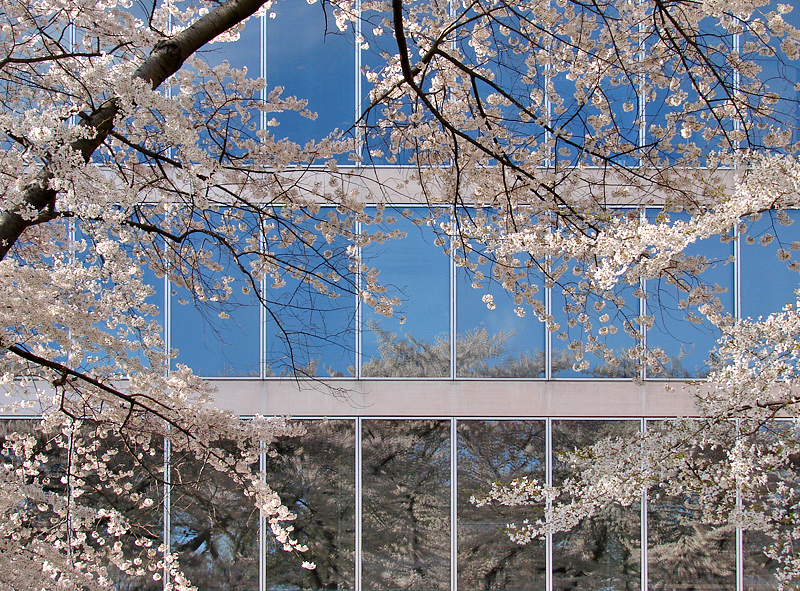 Spring, National Gallery East Wing