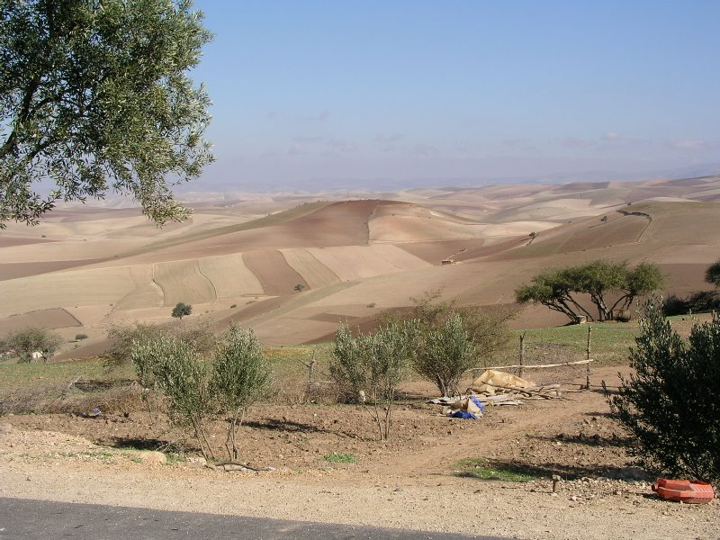 019 Scenery - way to Meknes.JPG