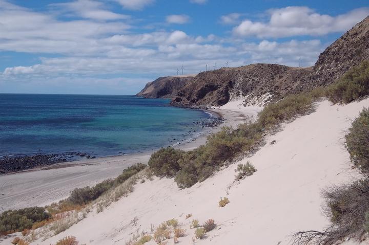 Morgans beach and windfarm