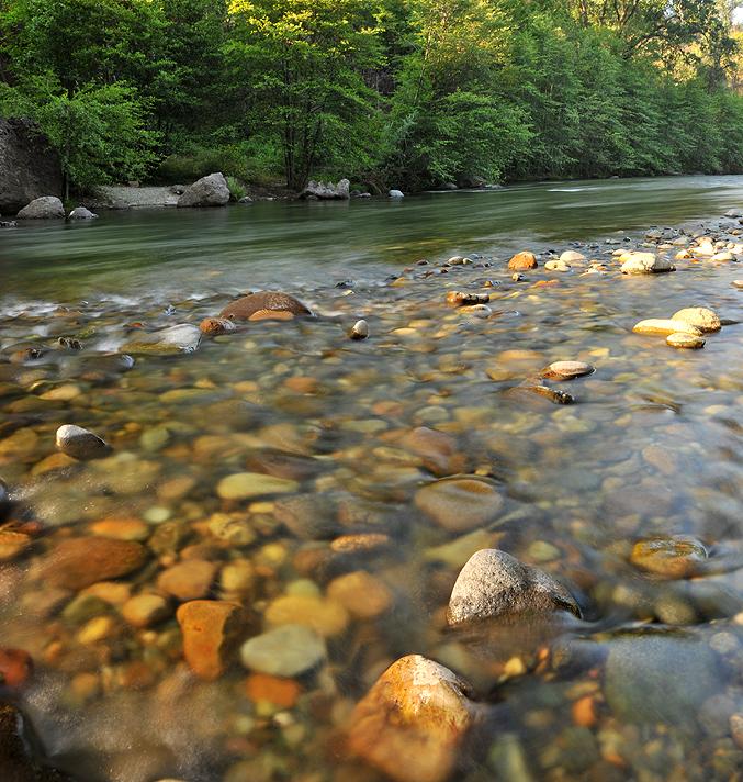 Chico CA - Honey Run Creek 1