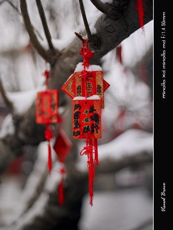 北海 Bei Hai 37110031 copy.jpg
