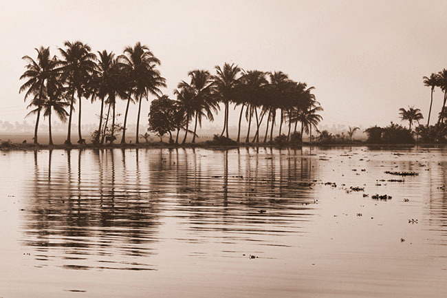 Timeless backwaters