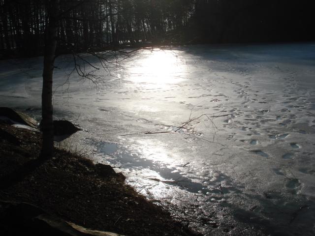 2008/03/11