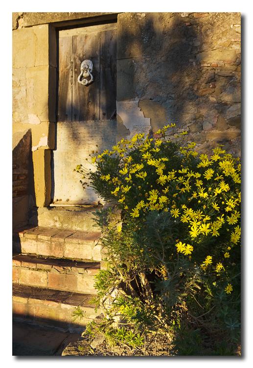 Puerta - Door