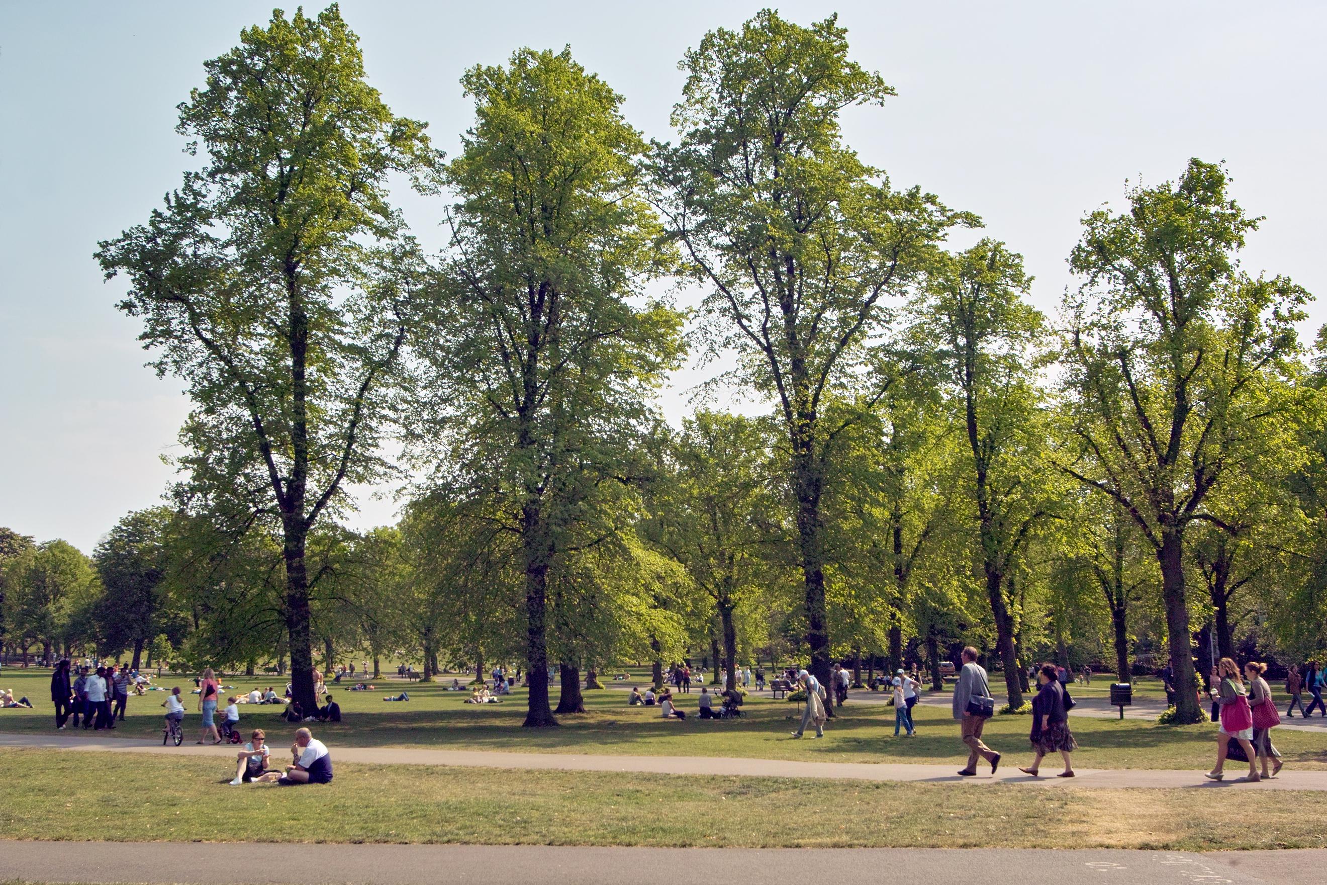 Park at Greenwich, London