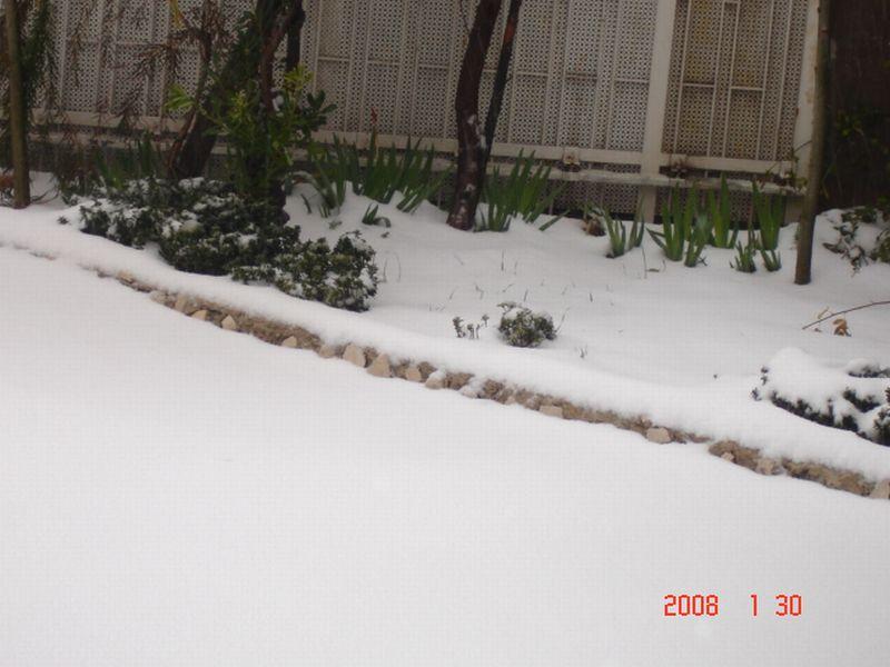 Snow in Amman 30.01.2008 026.jpg