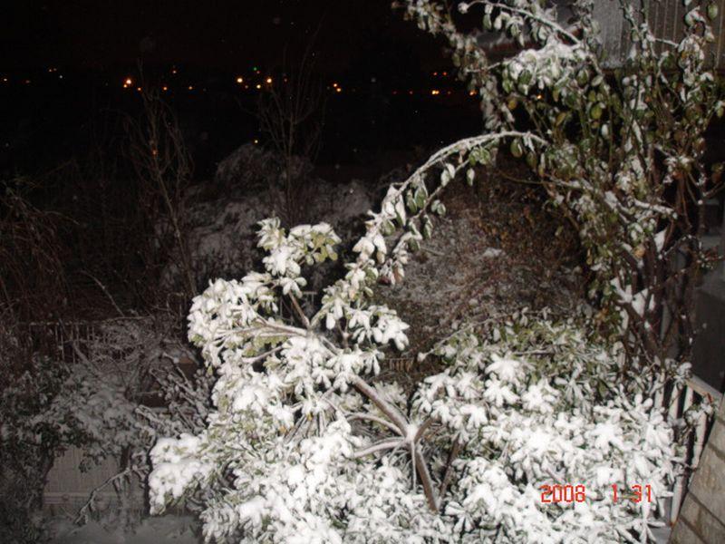 Snow in Amman 30.01.2008 040.jpg