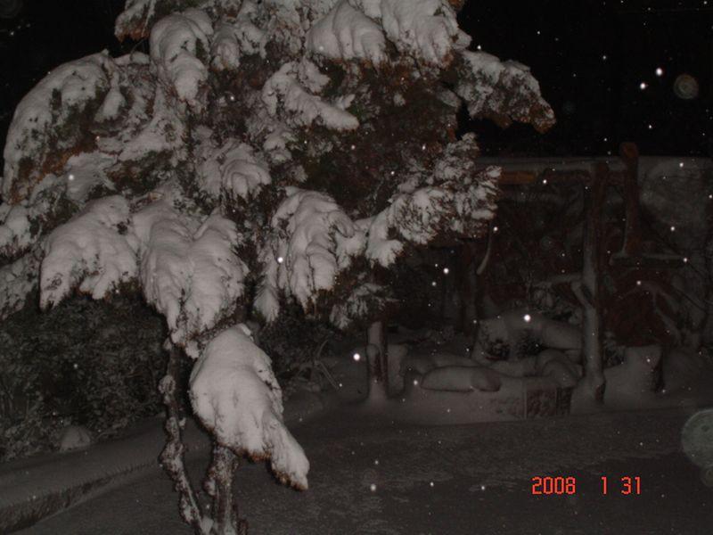 Snow in Amman 30.01.2008 047.jpg