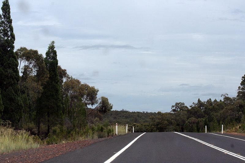 NSW Newell Highway ~ Going Down
