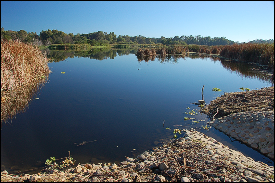 Paarl Bird Sanctuary 2
