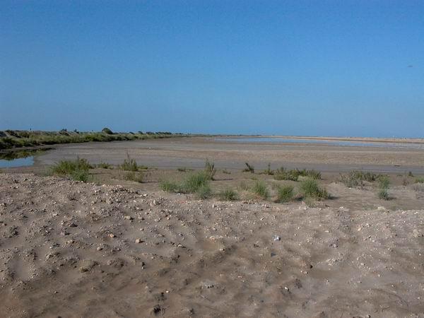 Punta de la Baña salt pans - Salina de la Punta de la Banya - Salines de la Trinitat o salinas de la Trinidad