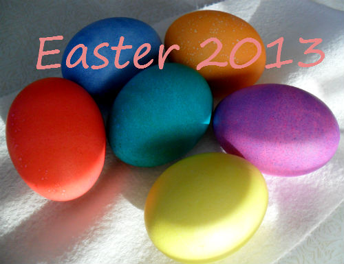 eggs in colour
