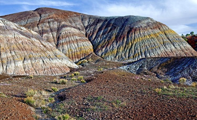 Chinle Formation, Vermillion Cliffs National Monument, AZ