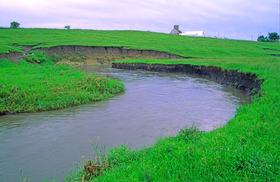 (STRE17) Cutbanks along a small stream, IA