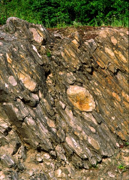 (META1) Archean stretched boulder metaconglomerate, Wawa, Ontario, Canada