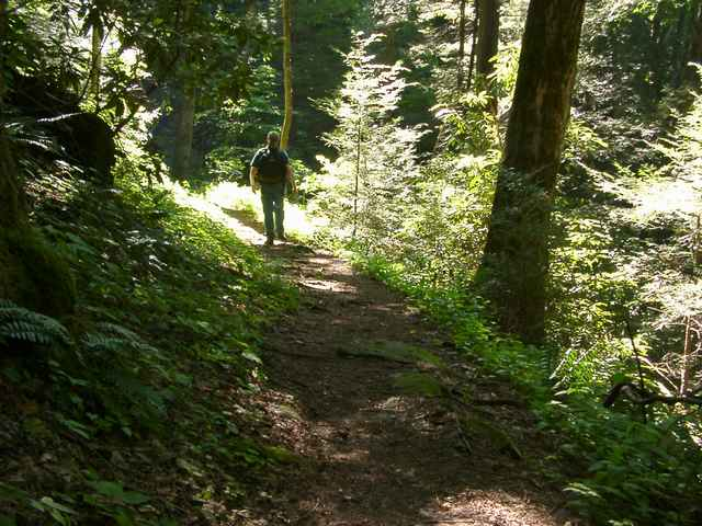hike 0306200098.JPG