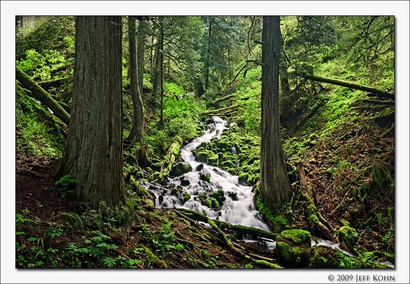 Cascade, Wahkeena Creek