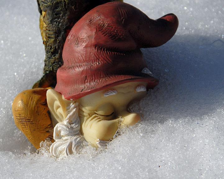 ds20070216_0104aw Gnome.jpg