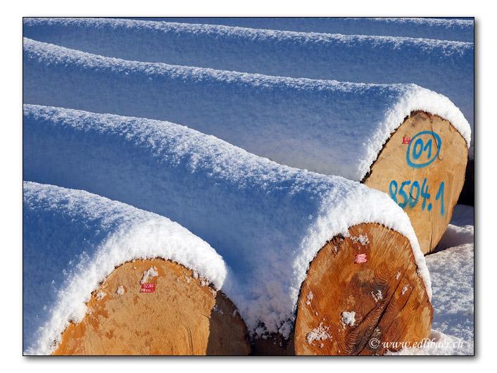 Geschlagenes Holz / log (1842)