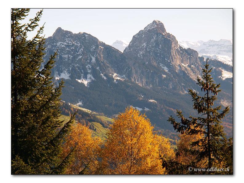 Herbstliche Mythen (3459)