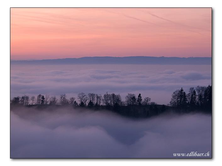 dusk and  fog / Abendstimmung im Zugerland