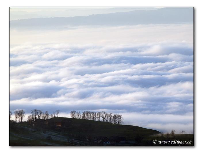 sea of fog / Nebelmeer