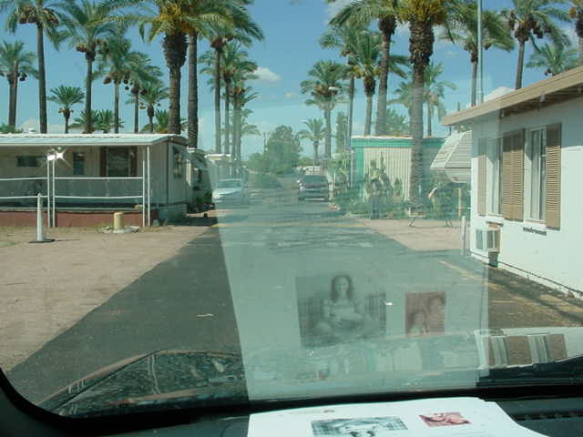 north on my street<br>Palm Lane Mesa AZ
