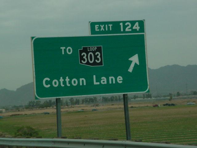 303 N Cotton Lane