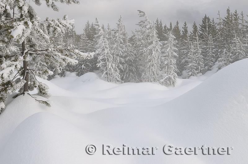 192 Geyser Snow 2.jpg