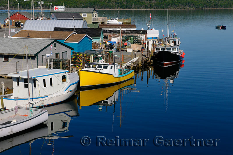 Fishing boats on Government Wharf at Fishermans Cove Eastern Passage Halifax Nova Scotia