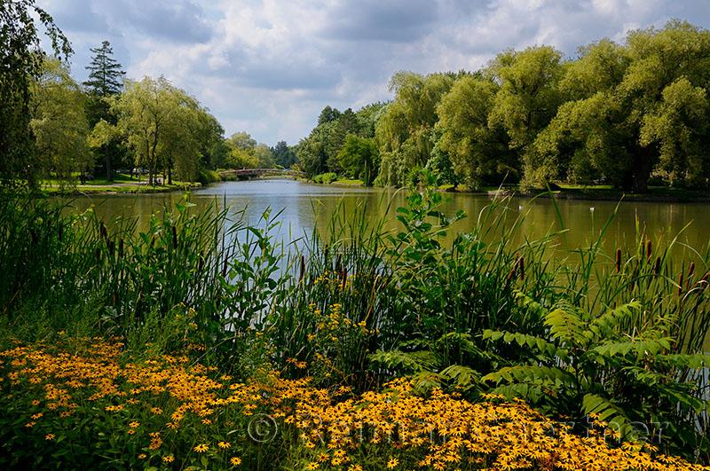210 Victoria Park Kitchener 6.jpg