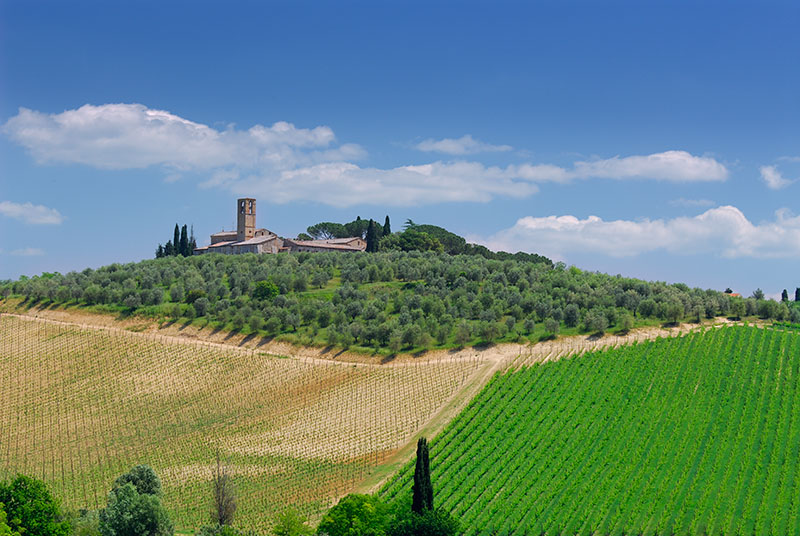 137 Tuscan Hills 2.jpg