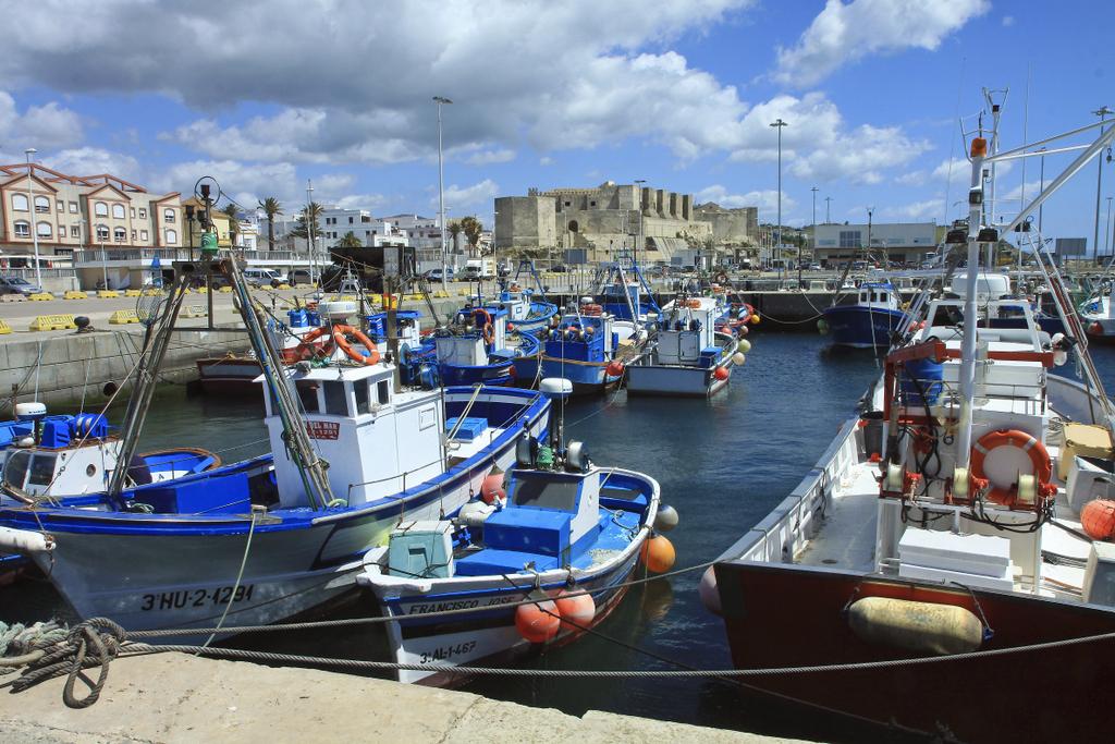 Tarifa harbour