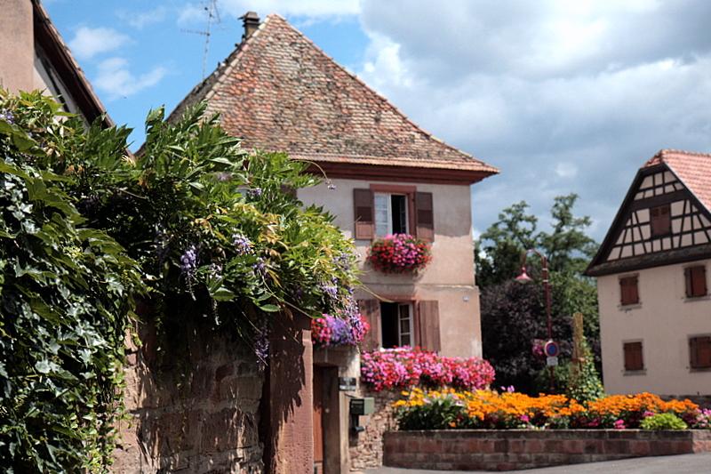 la maison fleurie.