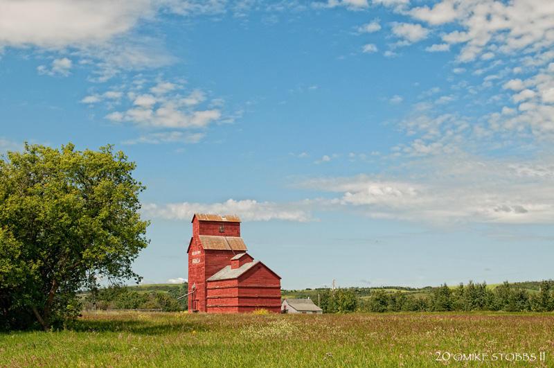 Prongua SK/Nelson Farms  July 2011