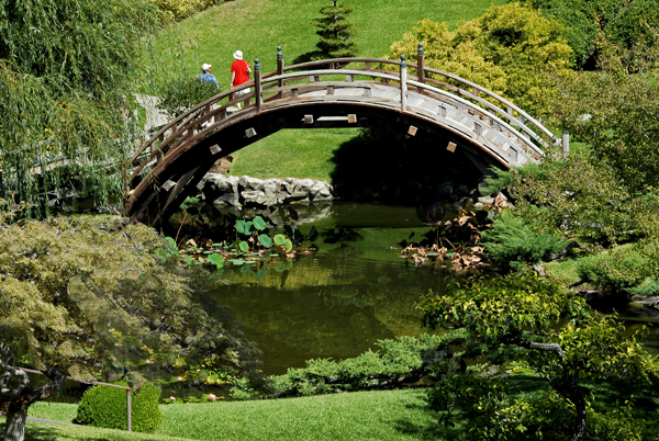 Bridge and grounds of Japanese Garden.