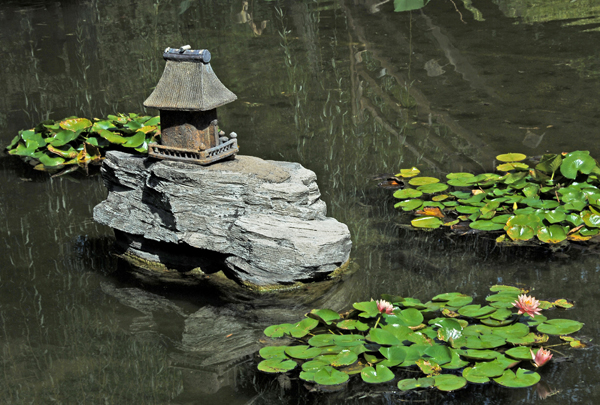 Japanese rock and water lillies.