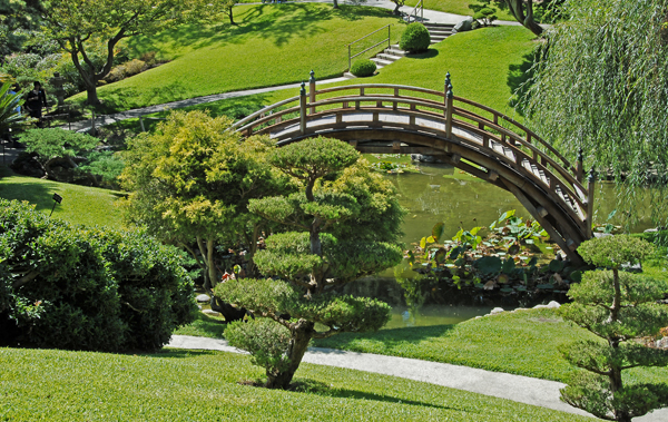 Another view of Japanese Garden.