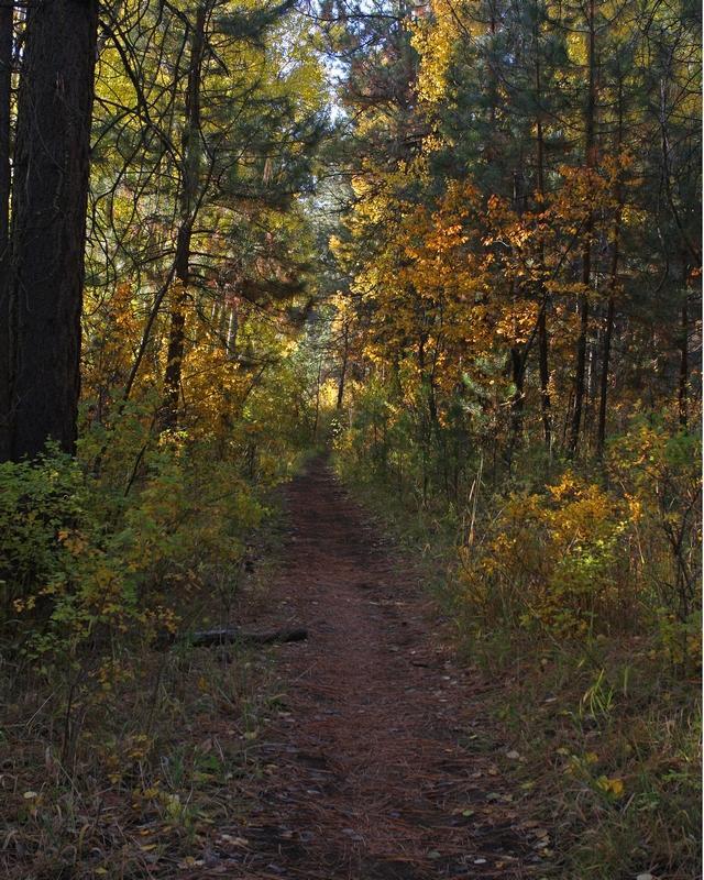 River Trail, Deschutes River, Bend