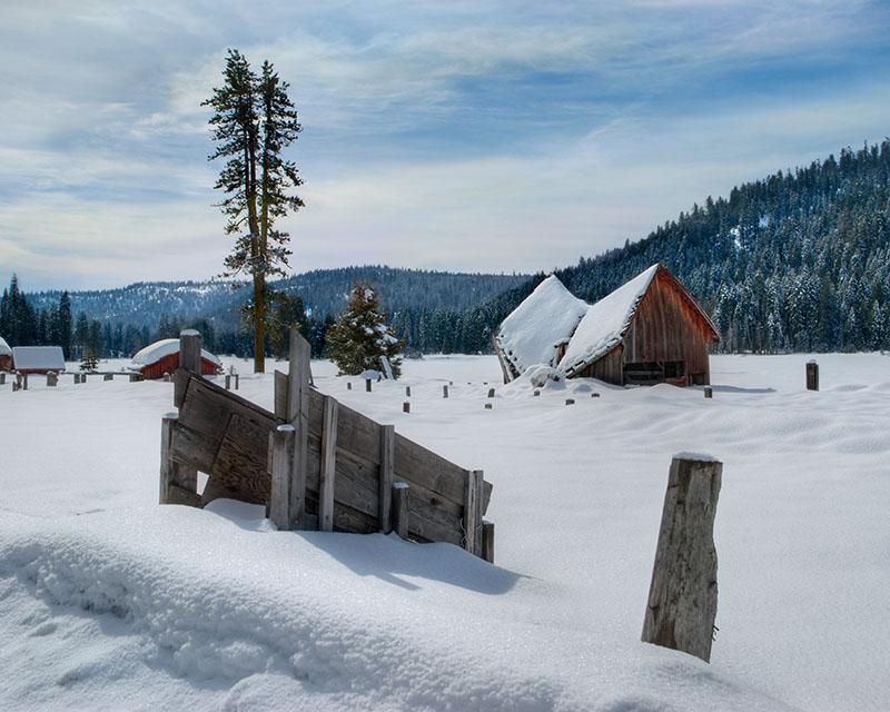 Childs Meadow Winter Scene