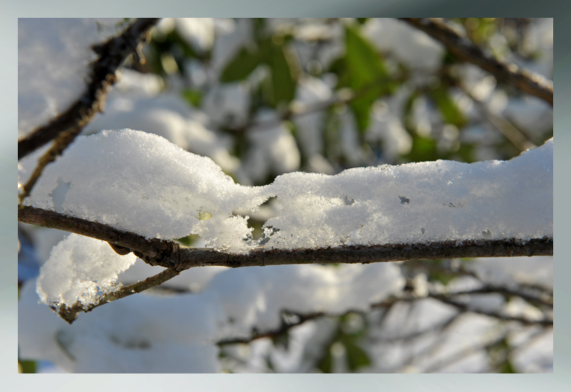 winter snowscupture