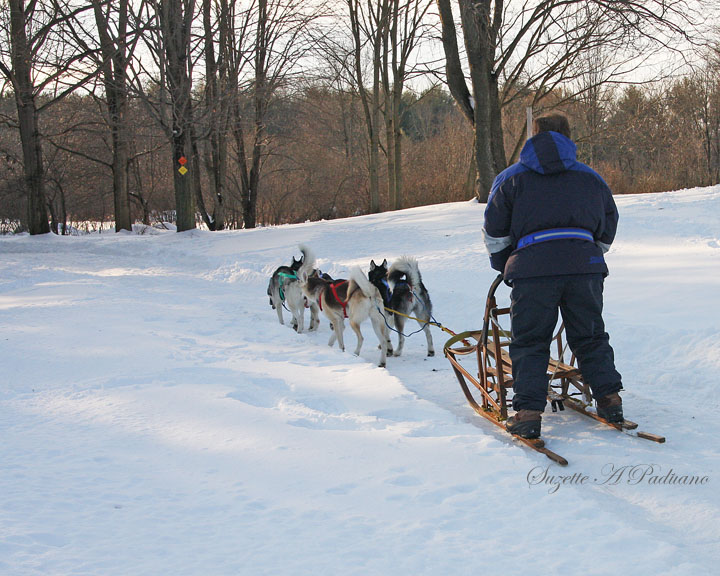 A Sled Ride