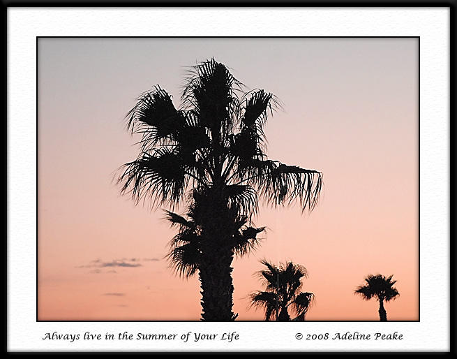 Sunset in Mesa Verde, Yuma, from house