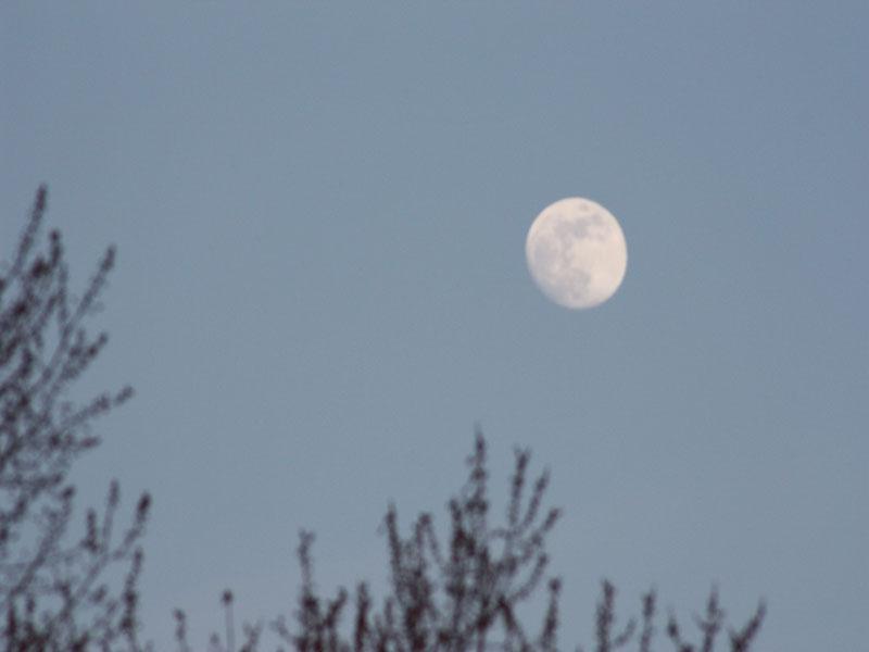 day full moon 2.jpg