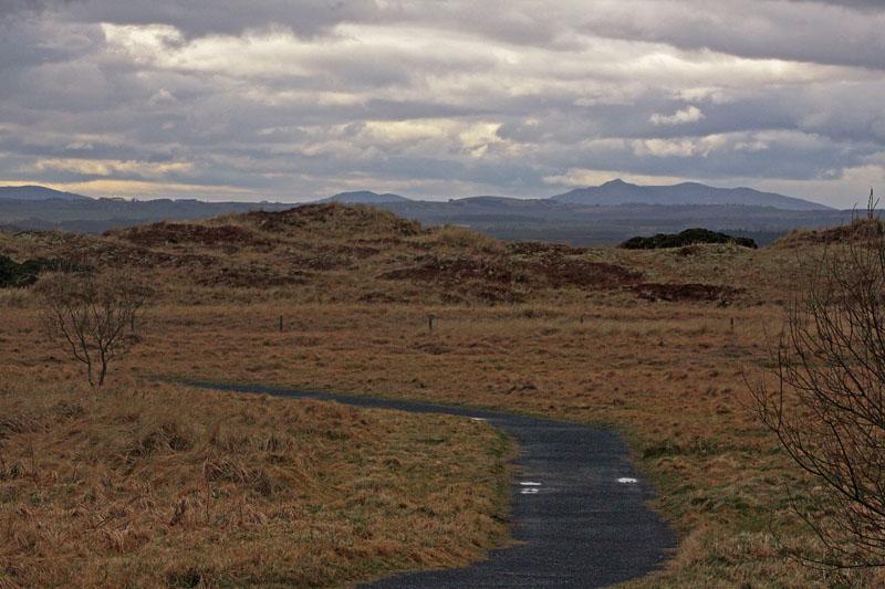 Forvie Nature Reserve